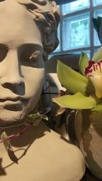 fashion-and-fantasy-dekoartikel-muenchen-zentrum-odeonsplatz-pinakotheken-20190118_112451